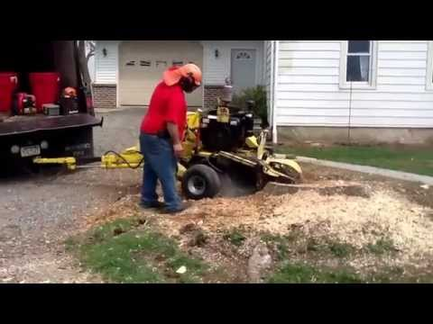 Smith tree service doing stump grinding.  717-866-8883 call us today for your free estimates.