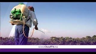 الجمارك تشن حربا على مبيدات فلاحية تتسبب في أمراض خطيرة   |   شوف الصحافة