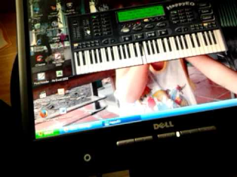 Con buom xuan remix Organ tren may tinh.