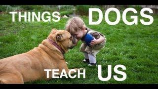 Was wir von Hunden lernen können