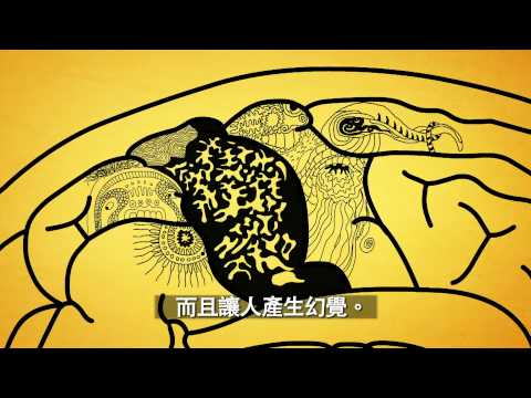 What Is Alzheimer's Disease (Traditional Chinese)