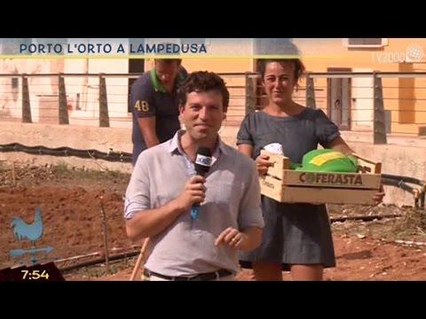 Porto l'orto a Lampedusa