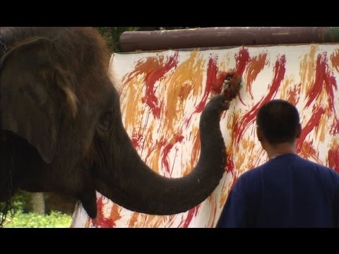The Awesome Elephant Artist - Extraordinary Animals