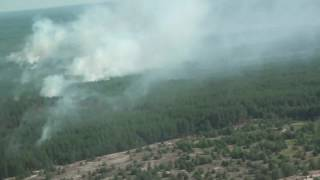 Ліквідація пожежі в Зоні відчуження