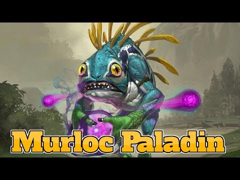 Murloc Paladin The Boomsday Project | Hearthstone Guide How To Play