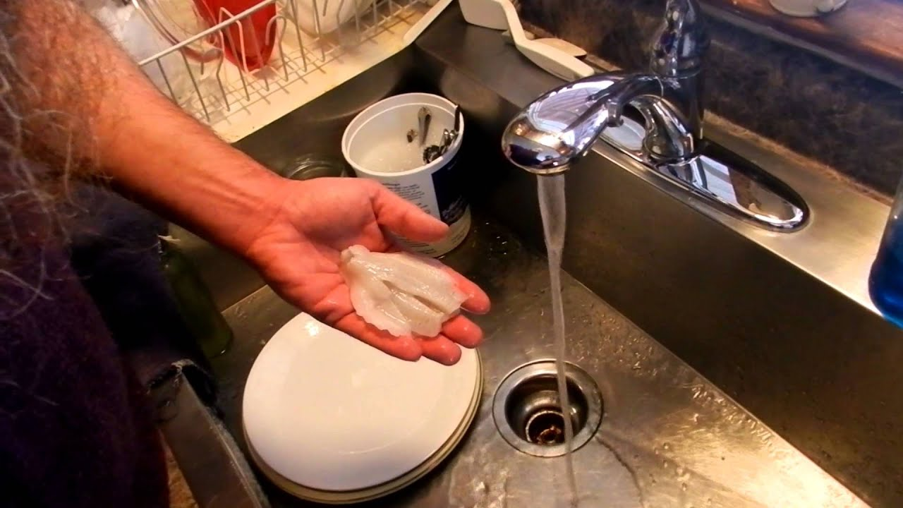How to freeze fish without suffering freezer burn youtube for How to freeze fish