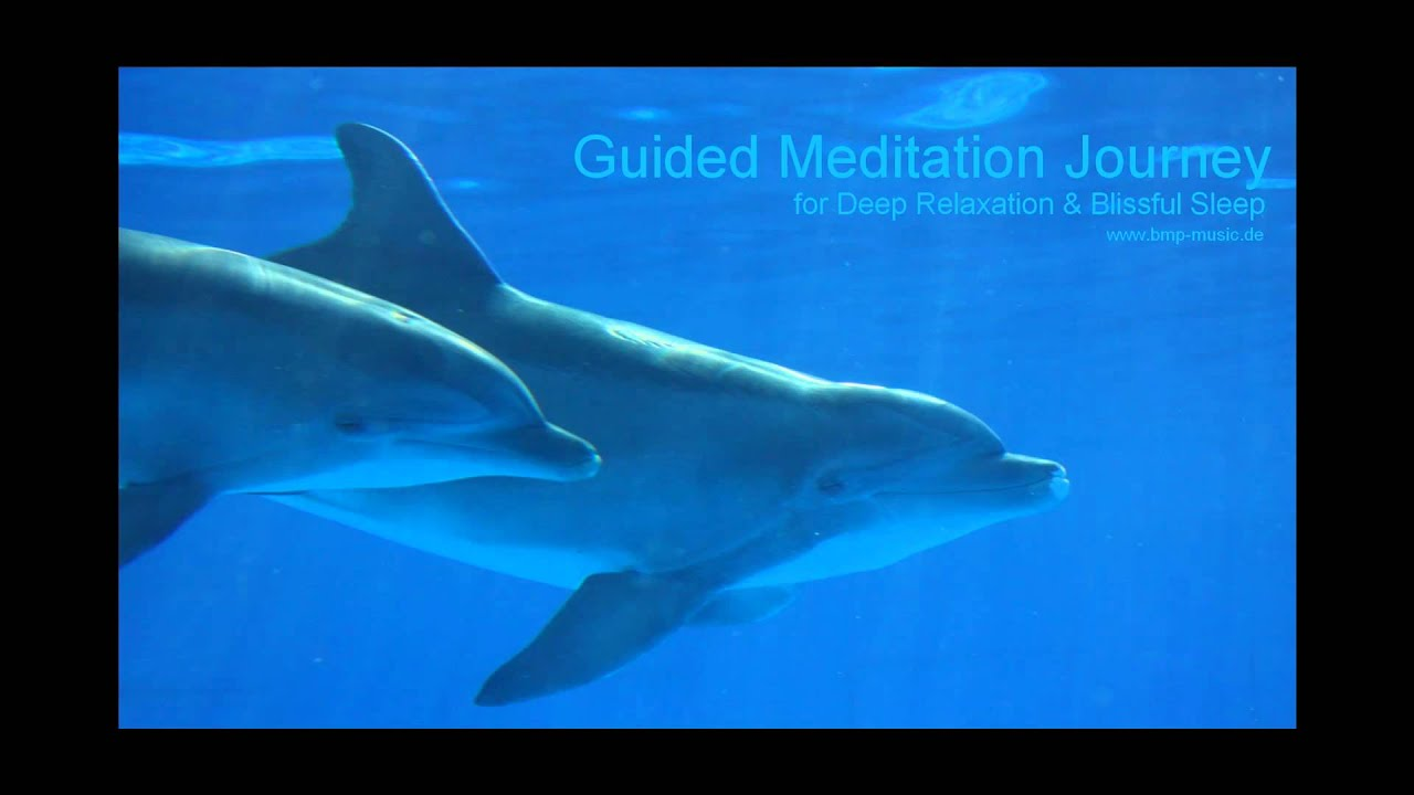 Youtube guided meditation wealth