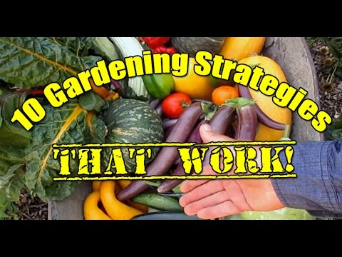 10 Gardening Strategies That Work!