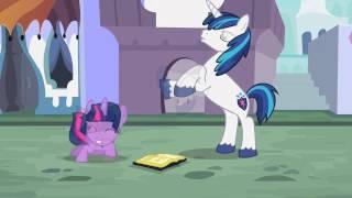 My Little Pony: FiM B.B.B.F.F. Polish