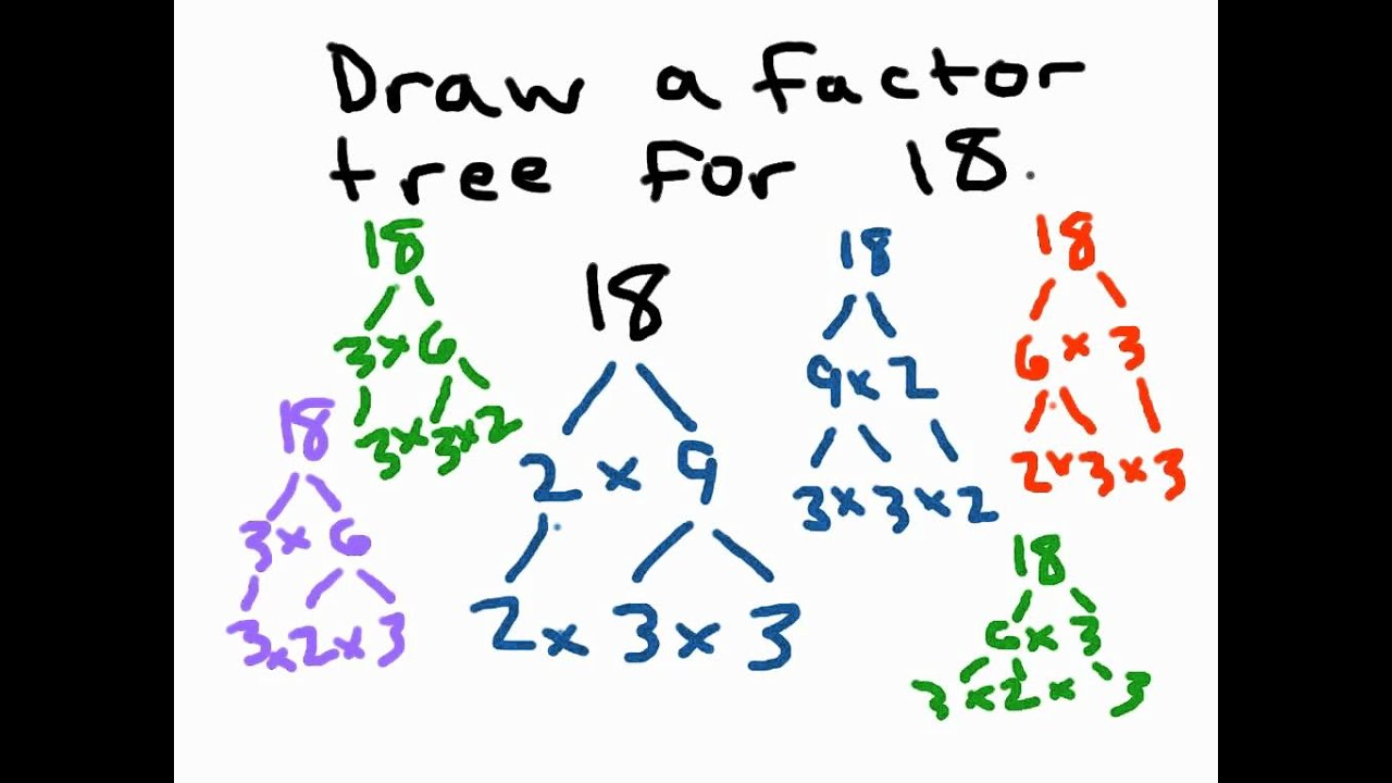 Factor Trees - YouTube