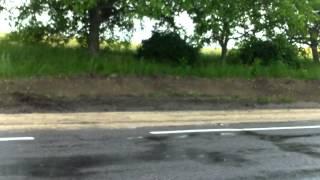Am pedalat pe ploaie de la Pepeni, SG, la Trinca, ED
