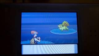 How To Get Shiny Pokemon Using The PokeRadar (Pokemon
