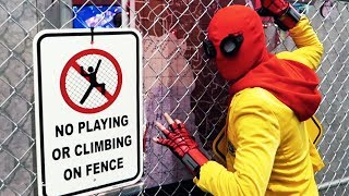I Dressed Up As Spiderman And Walked Around A Convention