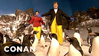 Andy Richter Visits the Seaworld Penguins: Conan on Tbs