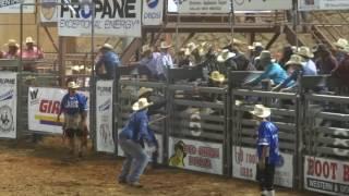 Wild Thing Championship Bull Riding (23rd Annual)