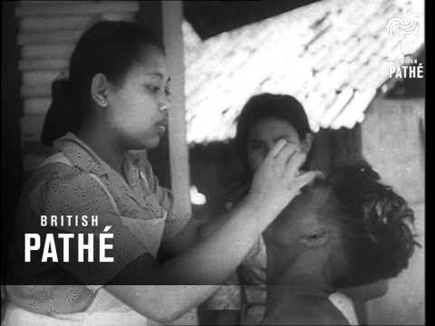 War In Indonesia (1947)