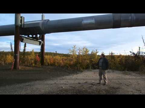 13 09 05  arctic circle tour  4  tour guide kasi & alaska pipeline