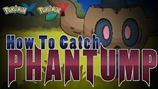 "Pokémon X And Y How To Catch ""Phantump""!"