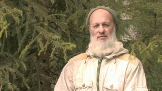 Владимир баженов трейдер
