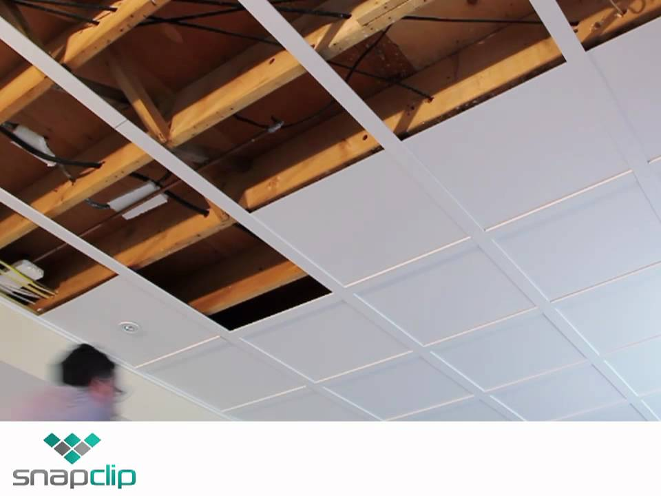 Snapclip Ceiling Video Mp4 Youtube
