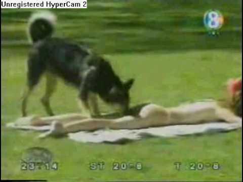 que buen perro  zoofilia   youtube