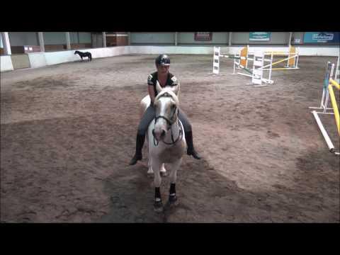 Alycia Burton- Bareback Show Jumping upto 1.40