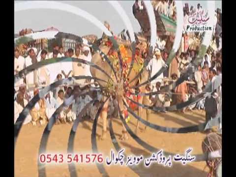 Best Camel Dance at Mela Gahi Guffanwala Sharif Wanhar Chakwal.