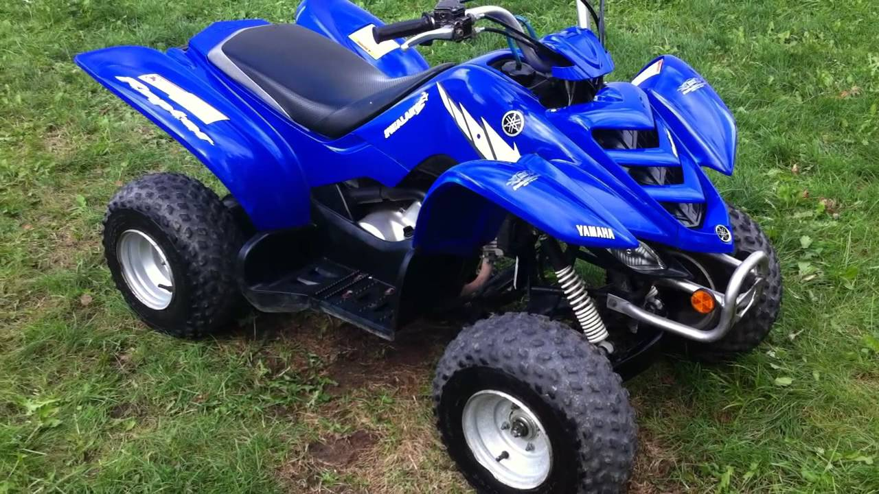Yamaha Raptor 50cc Atv on buyang motorcycle wiring diagram