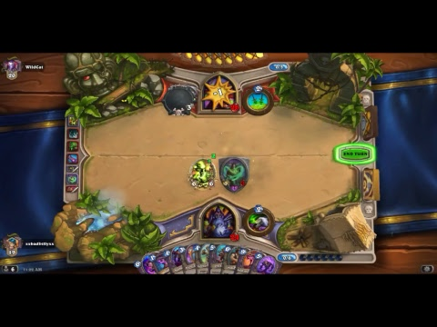 HEARTHSTONE GAMEPLAY WILD DECK