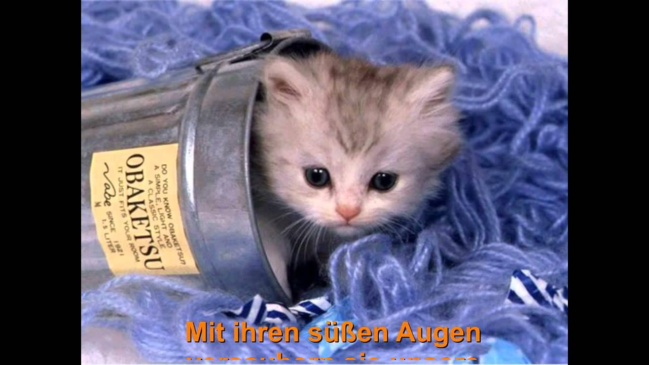 Berühmt Süße Baby Tier Malvorlagen Ideen - Beispielzusammenfassung ...