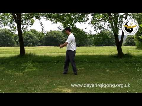 Wild Goose Qigong - Pai Da / Patting Gong - Demonstration