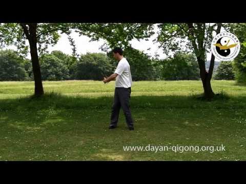 Wild Goose Qigong - Pai Da / Patting Gong - Demonstration
