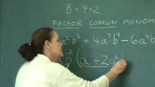 Factor comun monomio