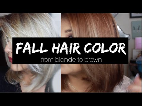 Fall Hair Color |from Blonde To Brown |kmanzo01