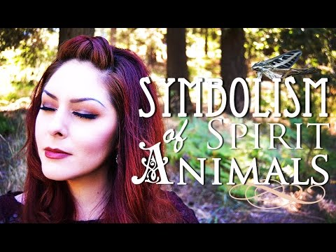 Spirit Animal Totems, Symbolism & Meditation ~ The White Witch Parlour
