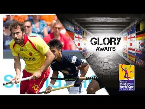 Spain vs Malaysia - Men's Rabobank Hockey World Cup 2014 Hague Pool A [09/6/2014]