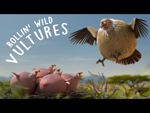 ROLLIN' SAFARI - 'Vulture' - what if animals were round?