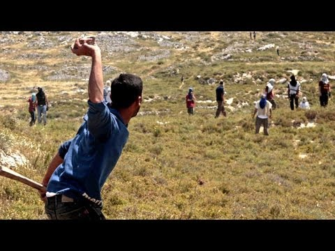 Jewish settlers attack Palestinians in the West Bank