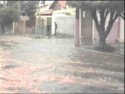 Bombeiros dão dicas sobre como agir em caso de chuvas fortes