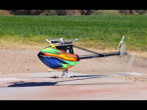 The world's most pissed off dragonfly (AKA model helicopter stunting)