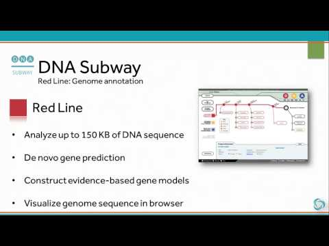 DNA Subway -- Minute Tour