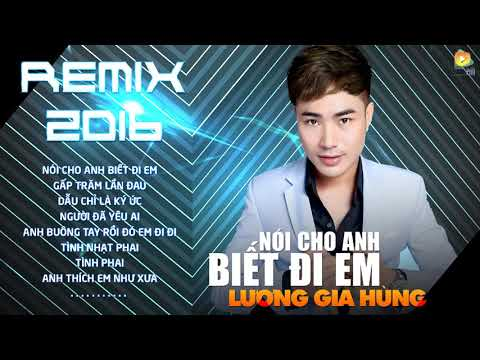 Lương Gia Hùng Remix 2017 || Liên Khúc Nhạc Trẻ Remix Hay Nhất Của Lương Gia Hùng 2017