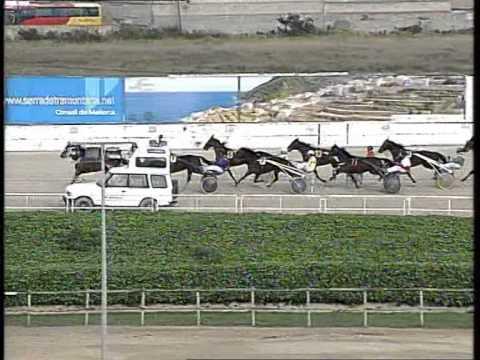 Vidéo de la course PMU PREMI PINERA