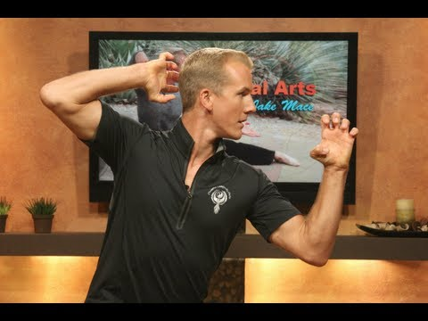 6 Reasons to Practice Martial Arts - Kung Fu Jake Mace on LifePathTV