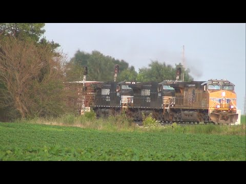 Norfolk Southern units on UP ethanol train: 2 more glimpses