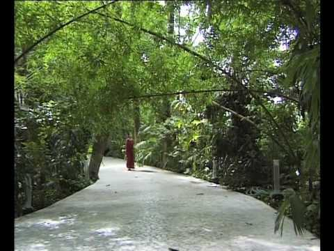 OSHO: The Silent Explosion - a visit to the Osho International Meditation Resort
