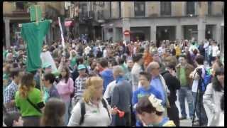 Desigual seguimiento de la huelga en la enseñanza en Segovia