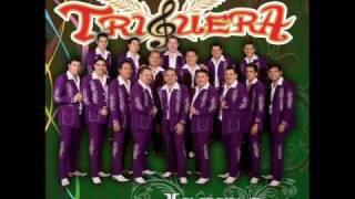 Mi reyna (audio) Banda Triguera