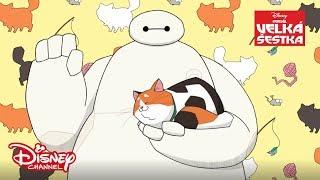 Baymax opatruje mačičky