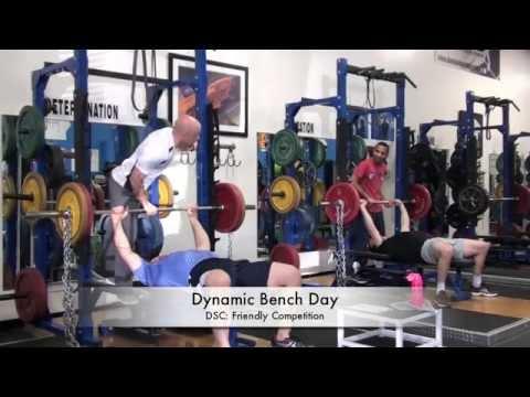Dynamic Bench Day